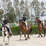 Pony Club Roma Equestrian Center Dettaglio
